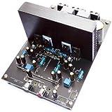 Generic 2 X 125W IRS2092 Class D Audio Amplifier Board