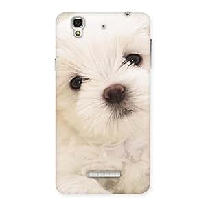 Impressive Cute Pup White Back Case Cover for YU Yureka Plus
