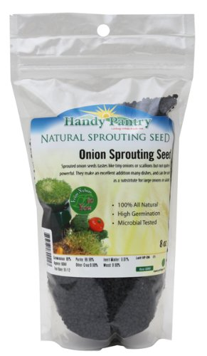 Onion Sprouting Seed