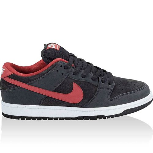 Nike Dunk Low Pro Sb (13)