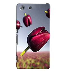 Blue Throat Pink Flower With Its Garden Printed Designer Back Cover/Case For Sony Xperia M5
