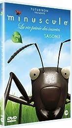 Minuscule : La Vie Privée Des Insectes - Dvd 3