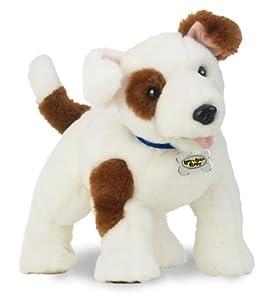 Jack Lick Love N Russell Terrier