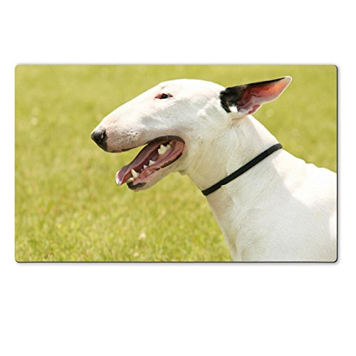Liili Premium Large Table Mat 28.4 x 17.7 x 0.2 inches Pit Bull Terrier portrait on the green grass Photo 20778339 (Pitbull Quilts compare prices)
