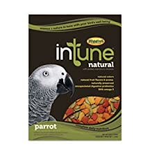buy Higgins 466254 Higg Intune Food For Parrot