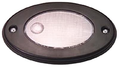 Innovative Lighting 060-5000-7 Oval Incandescent Compartment Light
