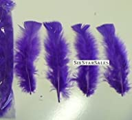 Ostrich Arrangement fillers–PURPLE Turkey Feathers-75/100 Pcs.-3-5 Long by Six Star Sales