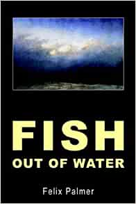 Fish out of water felix palmer 9780755201723 for A fish out of water book