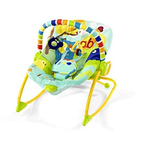 Rock In The Park Baby Bouncer