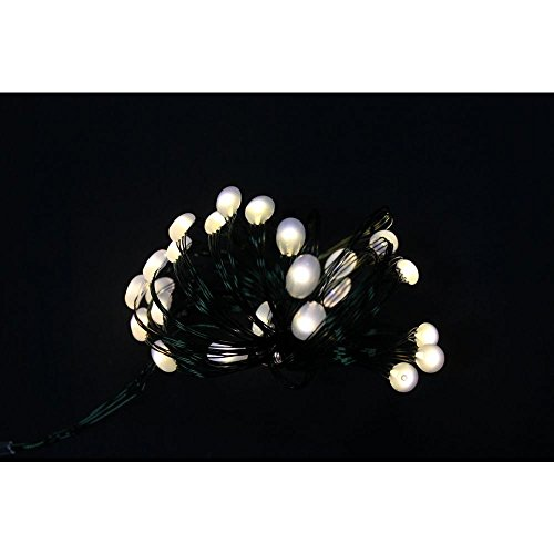 martha-stewart-living-8-ft-24-leds-ultra-slim-wire-warm-white-large-dot-string-light-battery-operate
