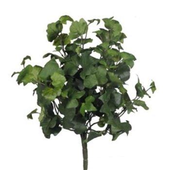 Lierre retombant panach for Plantes vertes retombantes