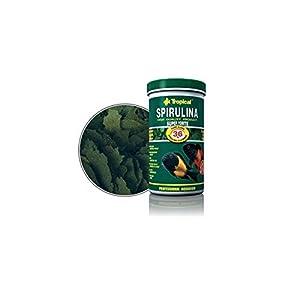 Tropical Super Spirulina Forte Flockenfutter mit 36% Spirulina (Platensis) Anteil, 1er Pack (1 x 11 l)