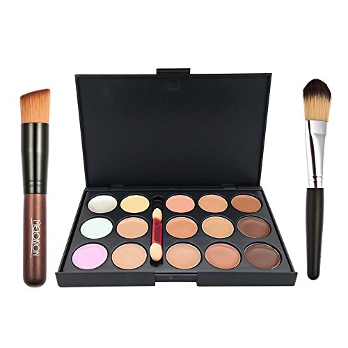 Ucanbe 15 Color Concealer Palette Cream Contour Kit With Pro Foundation Concealer Face Contouring Powder Makeup Brushes (Dark Side Lipstick compare prices)