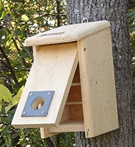 Coveside Convertible Winter Roosting Box