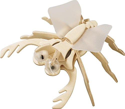 Haba Terra Kids - Assembly kit Beetle