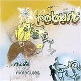 Songtexte von Robust - Potholes in Our Molecules