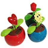 Solar Powered Dancing Flowers – A Happy Flower Pot Smiling Sun Flip Flop Toys for Cars, Home and Office – Red, Yellow, Green, Daisy Purple (Set of 3) – A Great Christmas, Birthday, Valentine, Anniversary Gift for Wives, Husbands, Mothers, Fathers, Daughters, Sons, Girlfriends, Boyfriends and All Love Friends