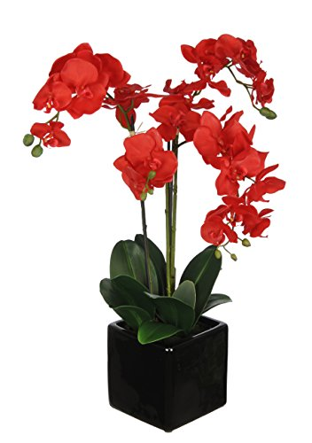 Artificial Triple-stem Phalaenopsis Orchid Arrangement Red