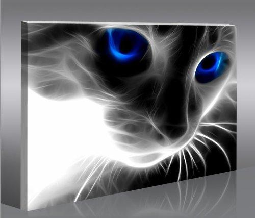 Magic cat 100x65 quadri moderni intelaiati pronti da for Stampe da appendere