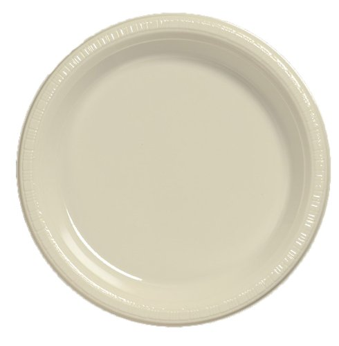 Creative Converting Touch of Color 20 Count Plastic Lunch Plates, Ivory - 1