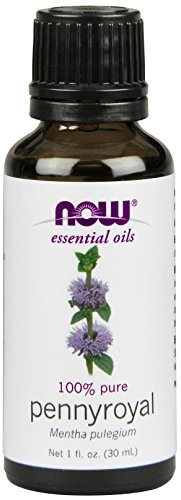 Now Foods Pennyroyal Oil, 1 Ounce