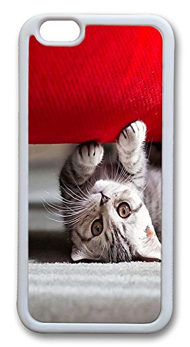 Best Couches For Cats front-378525