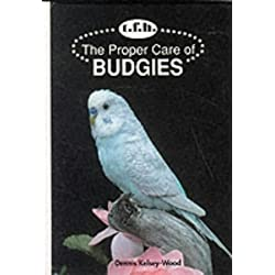 The Proper Care of Budgies