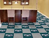 "Philadelphia Eagles 18""x18"" tiles Carpet Tiles Set of 20 Carpet Tiles at Amazon.com"