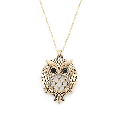 Antiqued Gold Tone Owl Crystal Glass Magnifier Pendant Necklace Magnifying