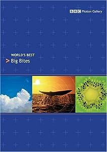 World' Best: Big Bites