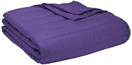 Loft Bunk Beds For Kids 706 front