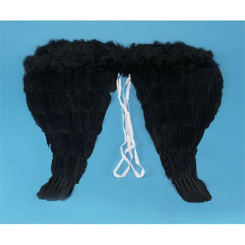 "Angel Wings 14"" Black Feather"