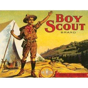 Amazon.com: P2283 BOY SCOUT ORANGE DISTRIBUTORS VINTAGE ...