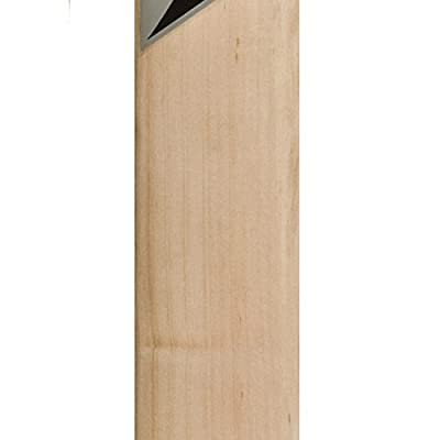HAWK Run maker Men's Kashmir-Willow Cricket Bat Full Size Red