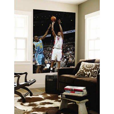 (48x72) Allen Einstein New Orleans Hornets v Detroit Pistons: Charlie Villanueva Quincy Pondexter Huge Wall Mural