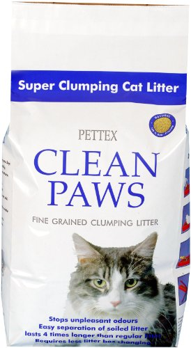 Is Clumping Cat Litter Safe For Kittens