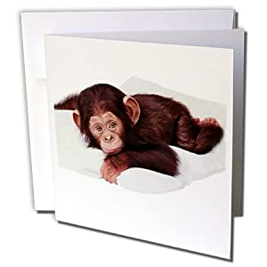 gc_628_2 Monkey - Cute Chimpanzee - Greeting Cards-12 Greeting Cards with envelopes