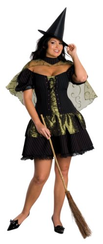Wizard of Oz Wicked Witch Of The West Costume