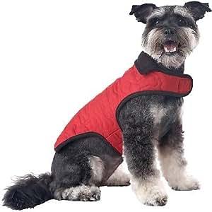 Amazon.com : Petco Pup Crew Red Quilted Bone Dog Jacket