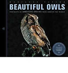 { BEAUTIFUL OWLS: PORTRAITS OF ARRESTING SPECIES - IPS } By Taylor, Marianne ( Author ) [ Aug - 2013 ] [ Paperback ]