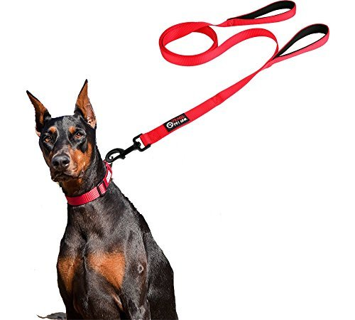 Primal-Pet-Gear-Dog-Leash-6ft-Long-with-Traffic-Padded-Handle-RED-OR-PURPLE-Heavy-Duty-Double-Handle-Lead-for-Greater-Control-Safety-Training-Perfect-for-Large-Dog-or-Medium-Dog-Dual-Handles