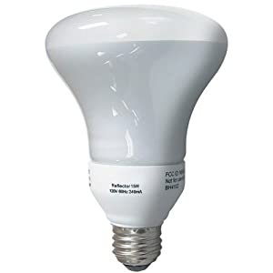 Globe 15-Watt R30 Indoor/Outdoor Compact Fluorescent Flood Reflector Bulb #0737101