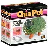 Chia Pet - Puppy