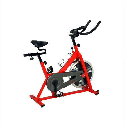 Sunny Health&amp;Fitness Indoor Cycling Bike - Red and Black