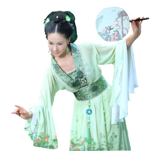 Chinese ancient Stage Costume Women's Chiffon Princess National Halloween Cosplay
