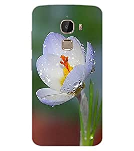 ColourCraft Beautiful Flower Design Back Case Cover for LeEco Le 2 Pro