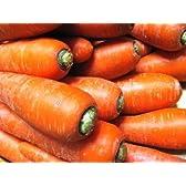 千葉県産 洗い「にんじん」 5kg 農薬・化学肥料不使用