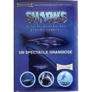 [MULTI] Sharks à la recherche des grands requins  [DVDRiP]