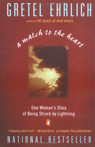 Image for A Match to the Heart: One Woman's Story of Being Struck By Lightning