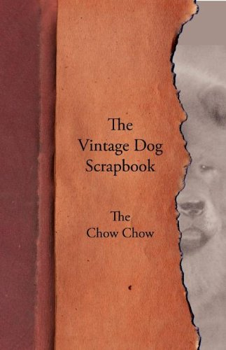the-vintage-dog-scrapbook-the-chow-chow
